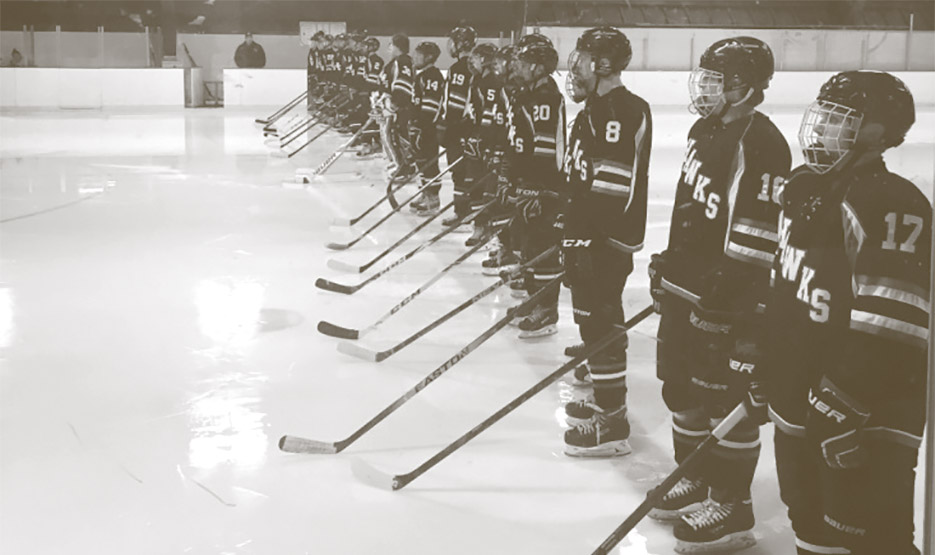 Baldwin-Woodville High School Hockey